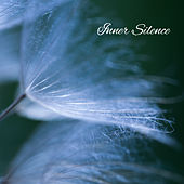Inner Silence – Ocean Waves for Sleep, Nature Sounds, Zen, Tranquility & Harmony, Chillout by Echoes of Nature