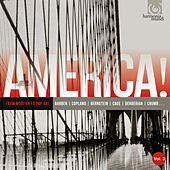 America, Vol. 3: From Modern to Pop Art von Various Artists