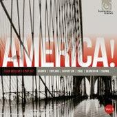 America, Vol. 3: From Modern to Pop Art de Various Artists