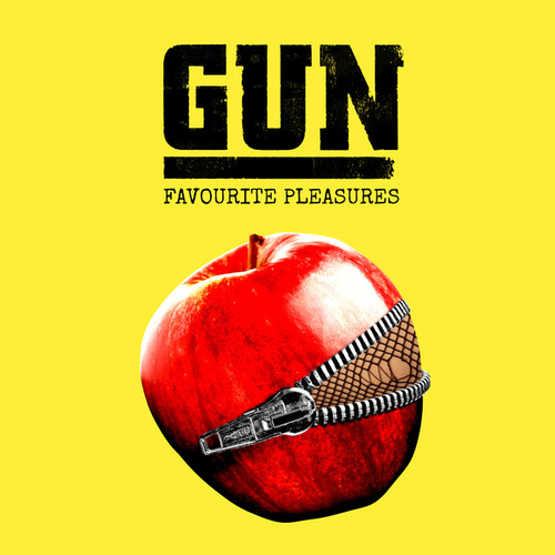 Favourite Pleasures by Gun