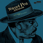 You Can Have Watergate by Sweet Pea Atkinson
