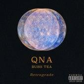 Retrograde de Qna