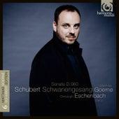 Schubert: Schwanengesang D. 957 - Piano Sonata D. 960 by Various Artists