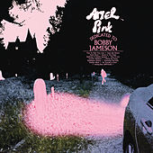 Dedicated To Bobby Jameson by Ariel Pink's Haunted Graffiti