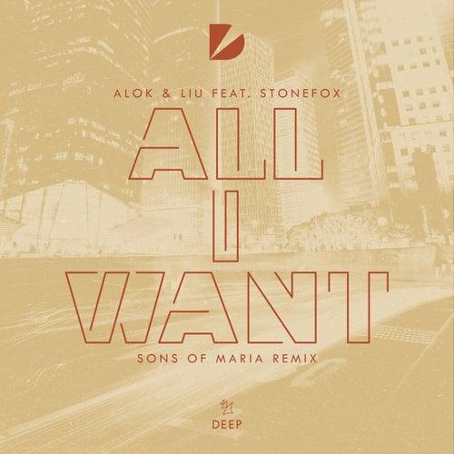 I Want You (Sons Of Maria Remix) de Alok & Liu