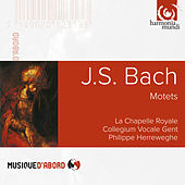 J.S. Bach: Motets by Various Artists