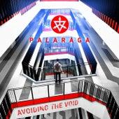 Avoiding the Void by Palaraga