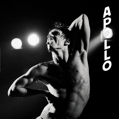 Apollo by Iggy Pop
