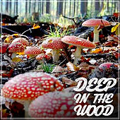 Deep in the Wood by Various Artists