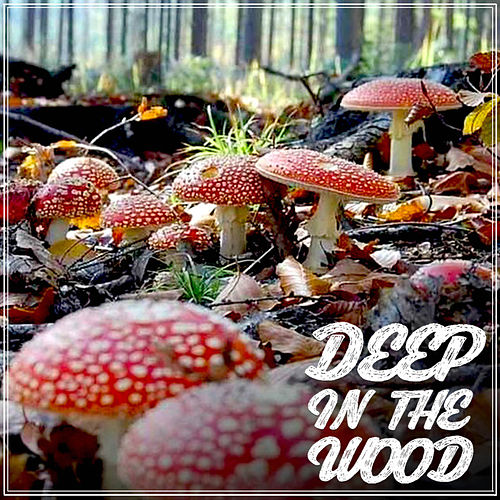 Deep in the Wood von Various Artists