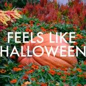 Feels Like Halloween by Various Artists