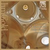 Dufay: O gemma lux de Various Artists