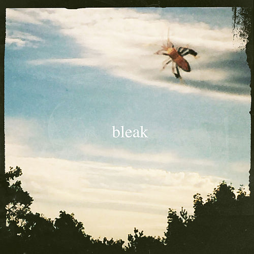 Bleak by Bleak