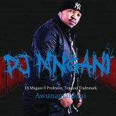 Awunamahloni by DJ Mngani