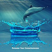 Release Your Consciousness de Best Relaxing SPA Music