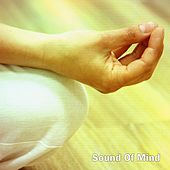 Sound Of Mind by Yoga Workout Music (1)