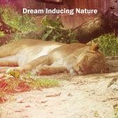 Dream Inducing Nature de Musica para Dormir Dream House