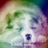 Naturally Restful by Baby Sleep Sleep