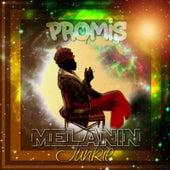 Melanin Junkie by Promis