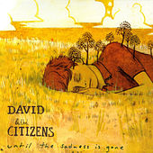 Until the Sadness Is Gone by David & the Citizens