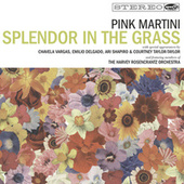Splendor in the Grass de Pink Martini