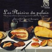 Les Plaisirs du Palais by Various Artists
