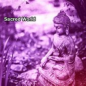 Sacred World de Zen Meditation and Natural White Noise and New Age Deep Massage