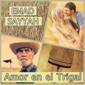 Amor en el Trigal by Emad Sayyah