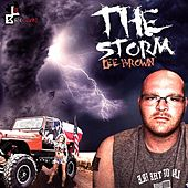 The Storm by Lee Brown