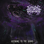 Ascending to the Worms by Euphoric Defilement