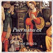 Puer Natus Est - Tudor Music for Advent and Christmas by Stile Antico
