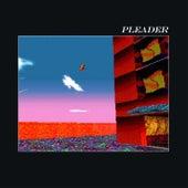 Pleader (Edit) by alt-J