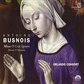 Busnois: Missa O Crux lignum - Motets - Chansons by The Orlando Consort