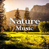 Nature Music – Espana New Age, Music 2017, Relaxing Melodies, Full of Calmness de Sounds Of Nature