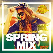 Spring Mix 2017 - EP by Various Artists