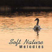 Soft Nature Melodies – Healing Sounds, Music for Mind Rest, Inner Relaxation, Peaceful Waves, No More Stress by Calming Sounds