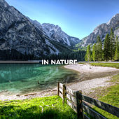 In Nature – Calming New Age, Relaxing Music, Sounds of Nature, Rest de Nature Sound Collection