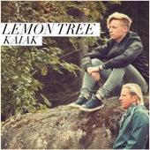 Lemon Tree de Kaiak