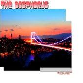 The Bosphorus by Burak Harsitlioglu