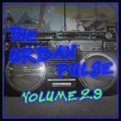 The Urban Pulse,Vol.29 van Various Artists