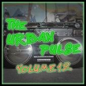 The Urban Pulse,Vol.12 von Various Artists
