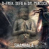 Shambala - Single de Various Artists