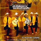 El Hijo del Chapo by Los Gatos De Sinaloa