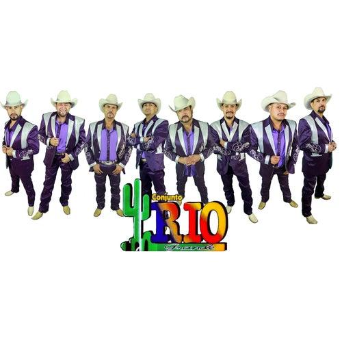 No Me Enseñaste - Single by Conjunto Rio Grande
