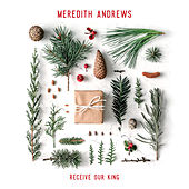 Receive Our King de Meredith Andrews