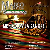 Mexico En La Sangre by Various Artists
