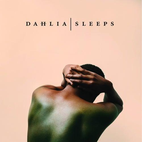 Lost & Found by Dahlia Sleeps