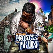 Projects to Paradise by Amaze