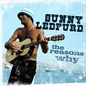 The Reasons Why by Sunny Ledfurd
