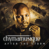 After the Storm by Various Artists